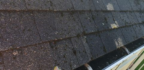 Before Roof Cleaning in Beverly, MA (2)