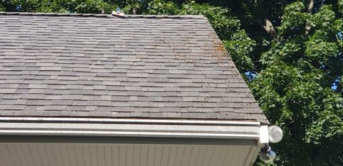 Before Roof Cleaning in Beverly, MA (3)