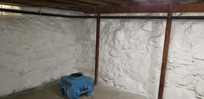 Mold Remediation in Saugus, MA after (5)