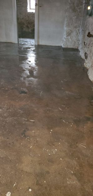 Before (Dry) & After (Wet) Odor Removal in Stoneham, MA (4)