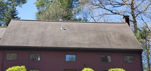 Before & After Moss & Mildew Removal & Treatment in Beverly, MA (10)