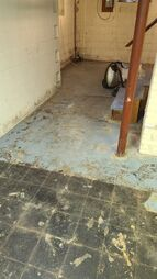 Basement Mold Removal Before in Lynnfield, MA (8)
