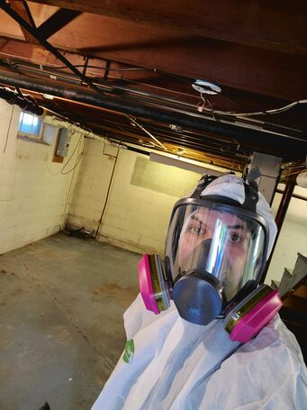 Basement Mold Removal Before in Lynnfield, MA (1)