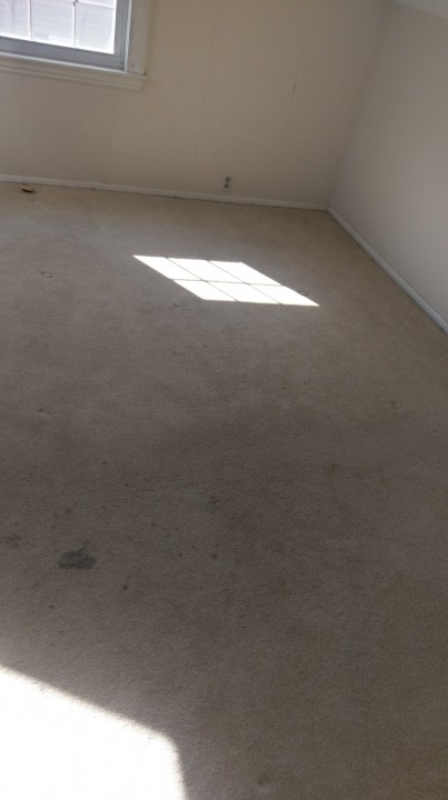 Carpet Cleaning Residential Cleaning