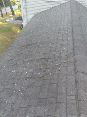 Before & After Roof Cleaning in Beverly, MA (1)